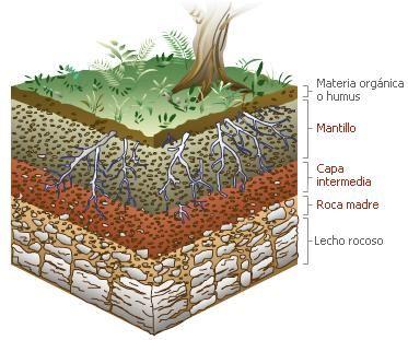 Estructura del suelo - Cojines gigantes para el suelo ...