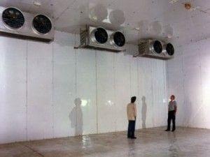 Temperatura de mantenimiento