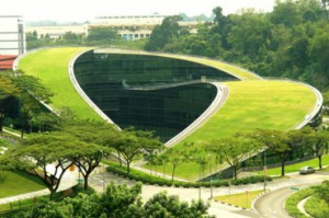 Historia de la arquitectura del paisaje