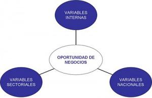 Identificacion de variables estrategicas