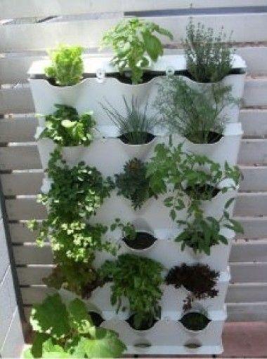 Como construir un jard n vertical for Historia de los jardines verticales