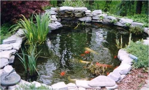 Como construir un estanque para peces for Tuinvijvers aanleggen