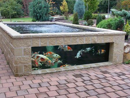 Como construir un estanque for Imagenes de estanques para ninos