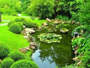 Como construir un estanque de jardín