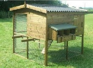 Como construir un gallinero pequeño