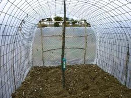 Como construir un invernadero econ mico for Materiales para un vivero