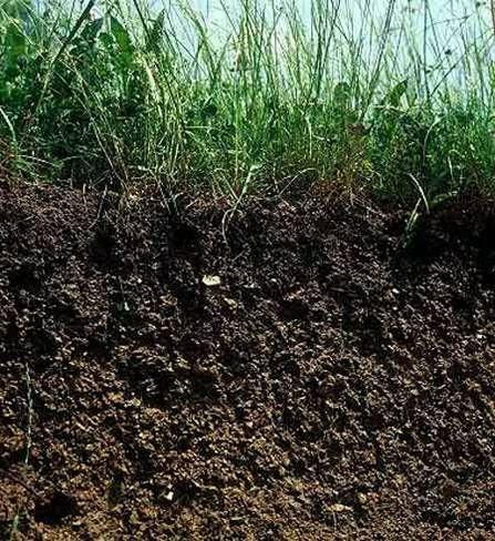 Propiedades fisicas del suelo for Que es la clausula suelo de los bancos