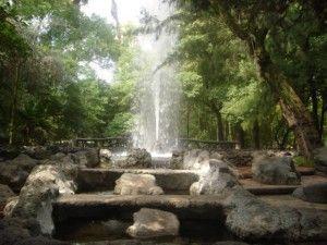 Parque Mexico - Colonia Condesa