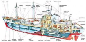 Construcción de Buques y barcos
