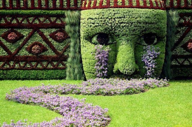 Dise os jardines peque os fotos presupuesto e imagenes for Jardines pequenos pegados a la pared