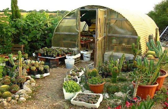 Como construir un invernadero casero fotos presupuesto e for Materiales para un vivero