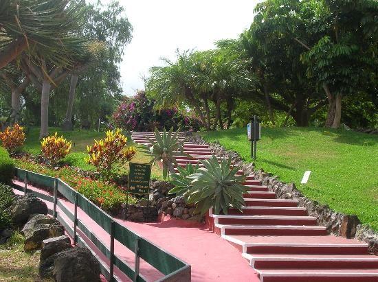 Decoracion De Jardines Elegantes