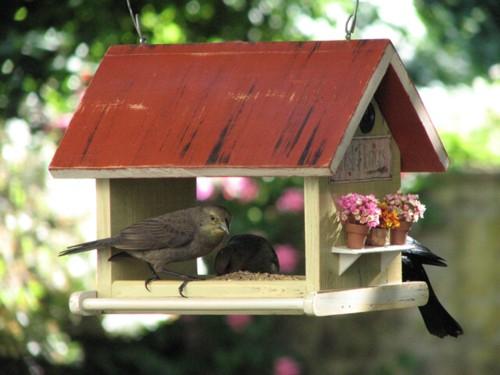 b8a517aae3c8b Casas para pájaros para decorar el jardín