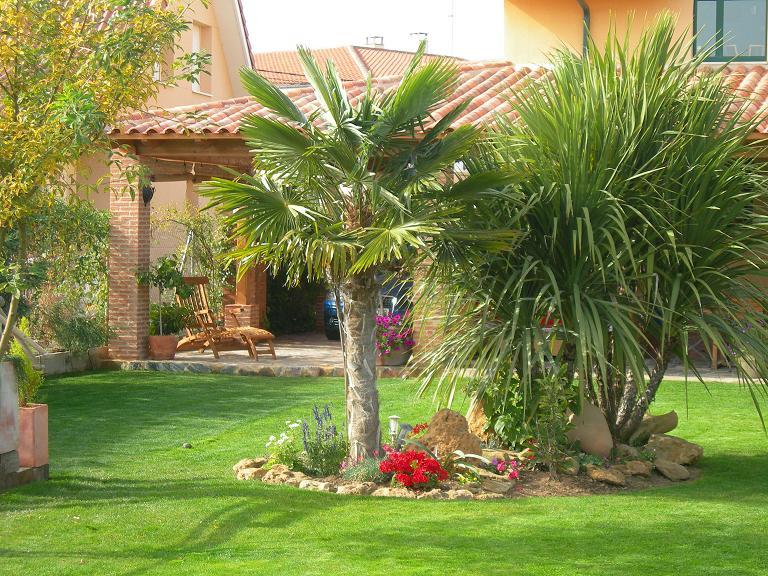 Decoraci n de jardines con palmeras - Jardines con estilo ...