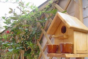 Cómo construir una casita para pájaros