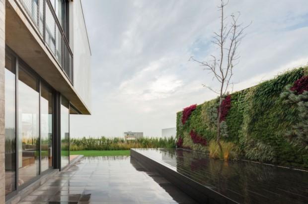 Minimalismo contemporáneo jardin