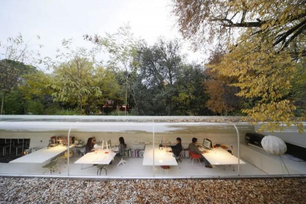 Oficinas bajo los árboles