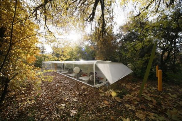 Oficinas bajo los árboles fachada