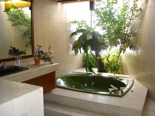 Baños decorados con plantas naturales 3