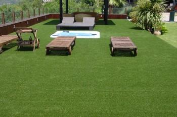 Optar por el césped ideal para el jardín.