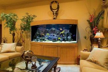 sala decorada con acuario