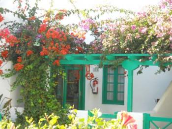 Pérgolas de color para el jardín 2