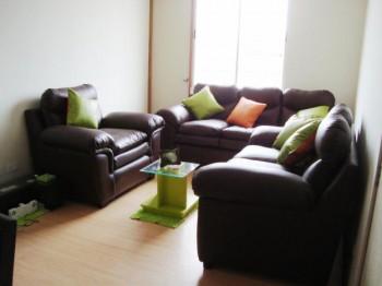 Muebles de cuero en el hogar