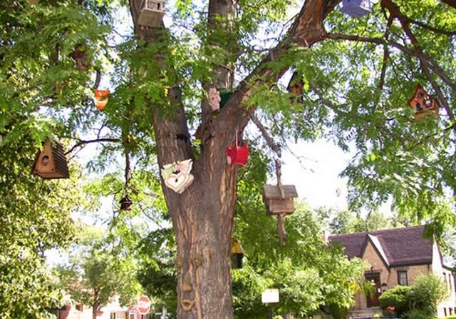 Como decorar los arboles del jardin 2