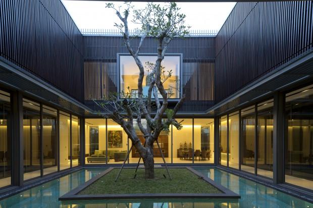 Vivienda del Árbol Centenario jardin