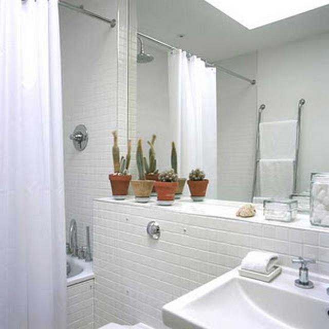 Decoraci n de ba o con cactus for Decoracion de ambientes interiores