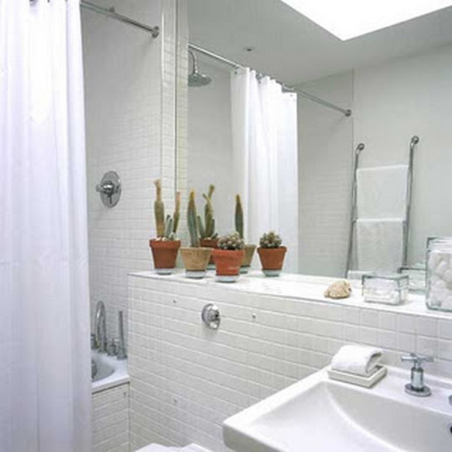 Decoraci n de ba o con cactus for Decoracion de ambientes modernos
