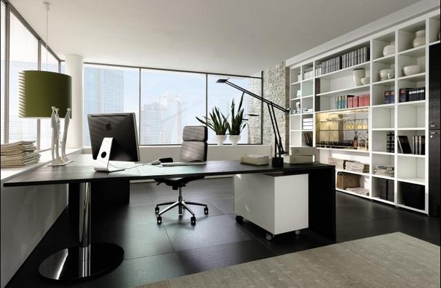 Fotos de oficinas de lujo 2