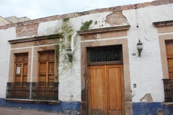 Parásitos vegetales en la fachada