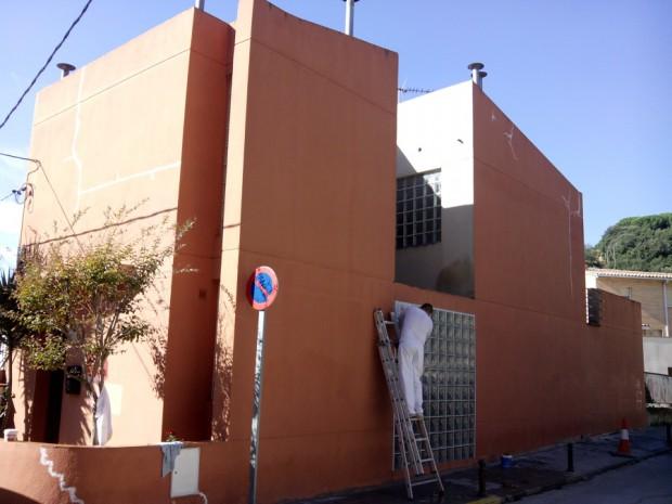 Parásitos vegetales en la fachada...