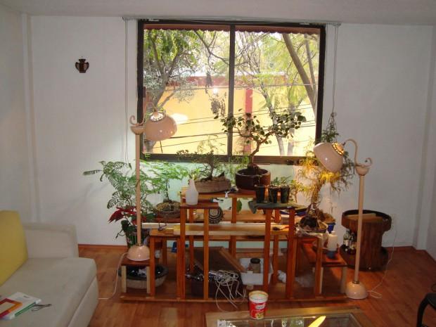Especificaciones de las ventanas para obtener la iluminación perfecta en el hogar.