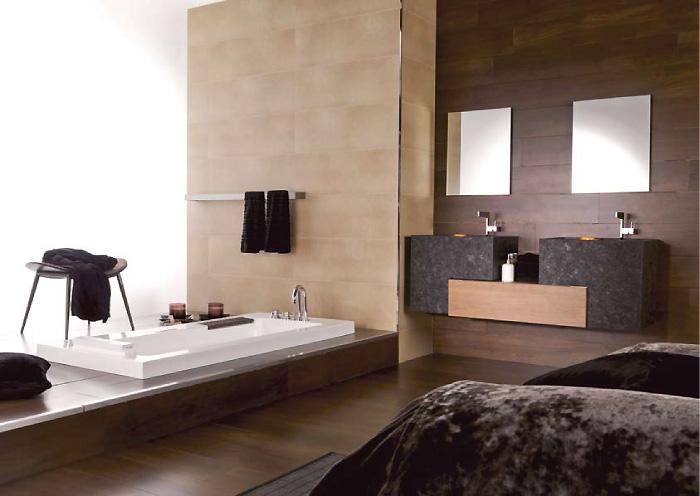 Dise o de ba os modernos accesorios y equipos for Banos modernos elegantes