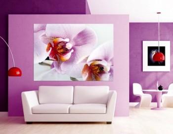 Colores para decorar en esta primavera – verano 2014 (1)