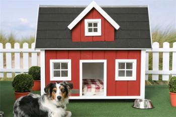 Casas para perros con estilo.
