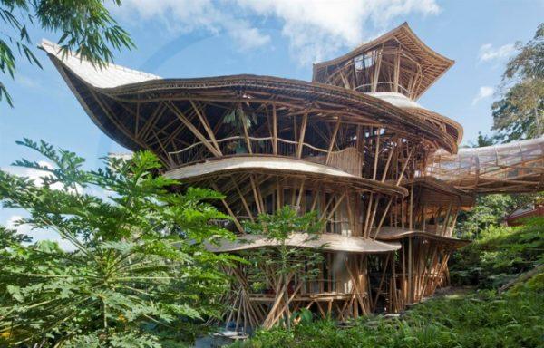 casa-bambu