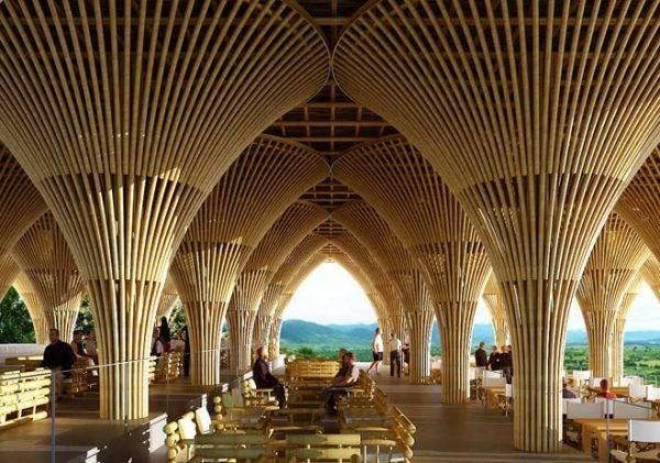 el bambu para la construccion